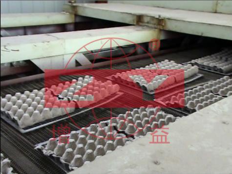 雞蛋蛋托造紙設備案例